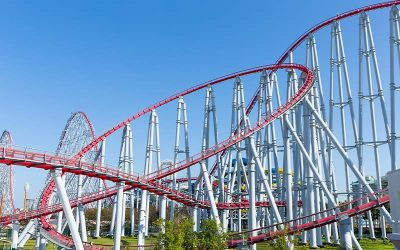 2020 Rollercoaster: From Epic Crisis to Unprecedented Growth